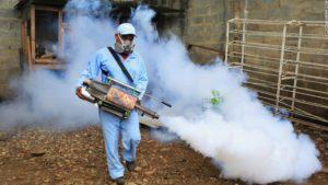 Dengue Mosquito Fumigation